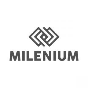 Milenium Incorporadora